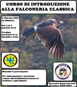 Corso di introduzione alla falconeria @ Sibillini Adventure | Umbria | Italia