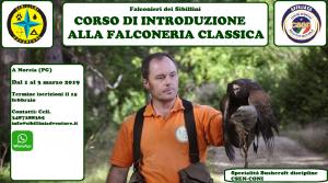 Falconeria corso di avvicinamento @ Sibillini Adventure | Umbria | Italia