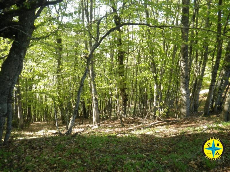 Orientamento naturale @ Norcia | Norcia | Umbria | Italia